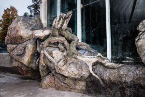 Imitace kořene stromu a skály ze stříkaného betonu v ZOO Liberec - Bamboodesign